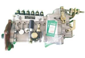 Weichai 6110 Fuel Pump For Alternator